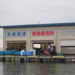 江の島地魚 江の島漁協で仕入れてました。出張寿司・ケータリング・宅配寿司